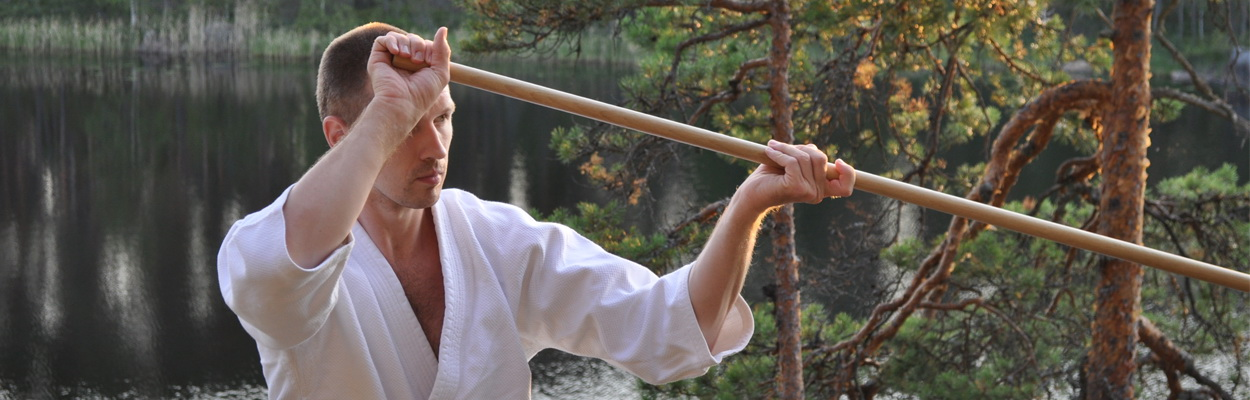 Индивидуальные  занятия  айкидо