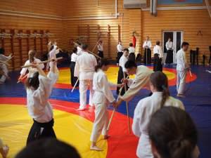 aikido seminar in SPb