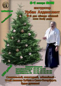 новогодний семинар по айкидо